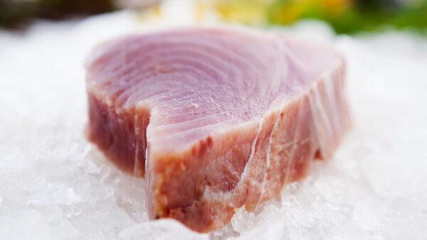 Tonfisk kotletter (1kg)