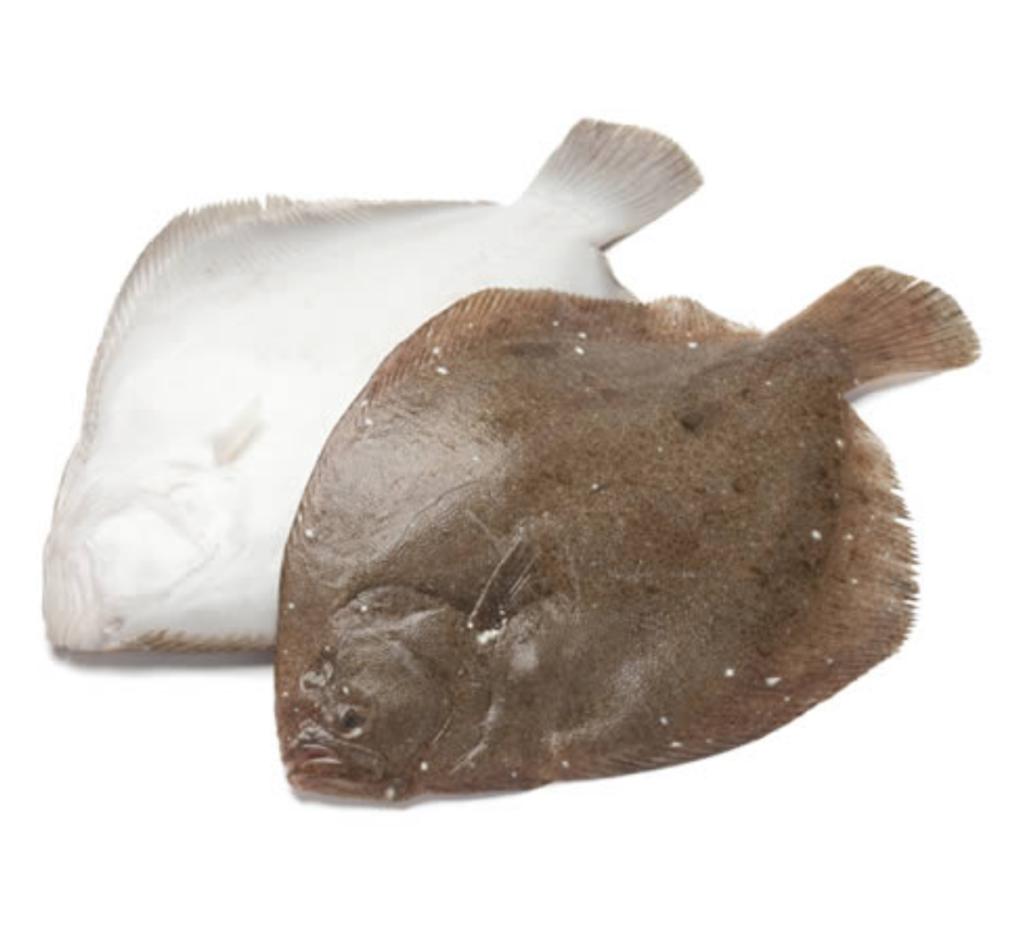 Slätvarsfilé (2,5 kg)